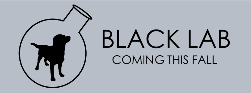 blacklab1