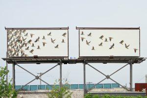 calder-kamin-billboard_7